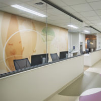 Custom Wall Protection for Children's Hospital